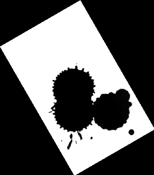 在这次大赛中,克里斯・法的《决战2012》和扎克布什的《混沌的2012年》也是获奖的作品。