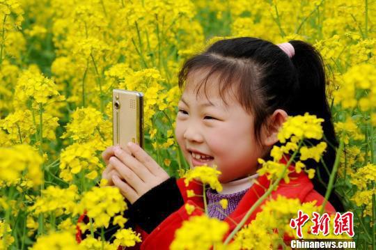 图为一名小朋友正开心地用手机拍摄江西省婺源县油菜花海。 卓忠伟 摄