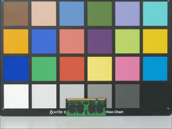 手动白平衡:色彩表现非常准确。