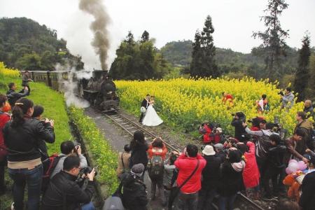 犍为/油菜花开,小火车引人向往。
