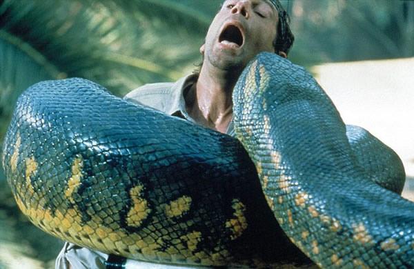 地最大捕食者:泰坦巨蟒荧屏重生-恐怖鳄鱼巨莽吃人电影图片 鳄鱼