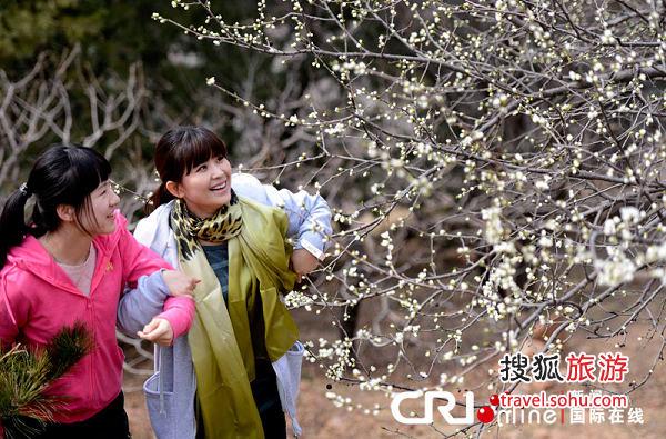 北京植物园赏桃花