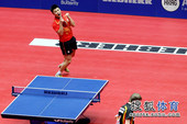 图文:世乒赛中国3-0德国6连冠 王皓获胜庆祝