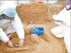 """马祖亮岛发现珍贵7900年前完整骨骸,是南岛语族新石器时代最早人类。图为台""""中研院""""研究员陈仲玉率领的考古队,在亮岛""""岛尾一号""""遗址挖掘的情形。台湾《中国时报》"""
