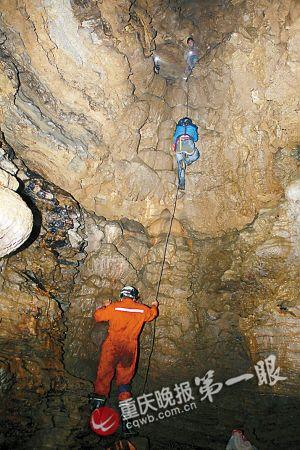 洞内发现的大熊猫骨骸