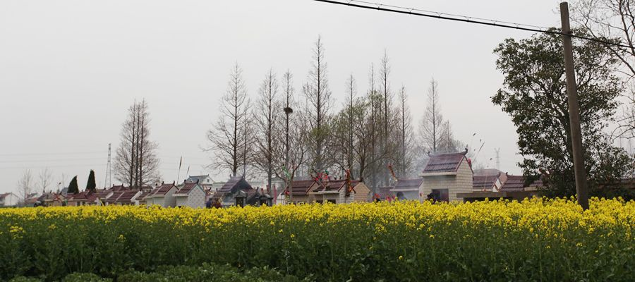 江苏省南通市如东县,相当数量的逝者