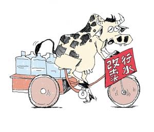 奶价低于矿泉水价 奶农杀牛谁之过?