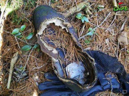 接着,警察嚷嚷着拨开了人群,开始用照相机拍摄死者,并用塑料袋装了尸体并封上了口,用金属推车将其送到附近的一个停车场。可还没等把这具尸体推入救护车里,又在密林深处发现了另一具尸体。
