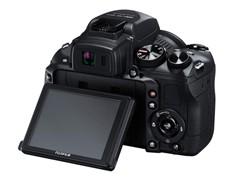 春天拍花首选 1cm超微距数码相机推荐