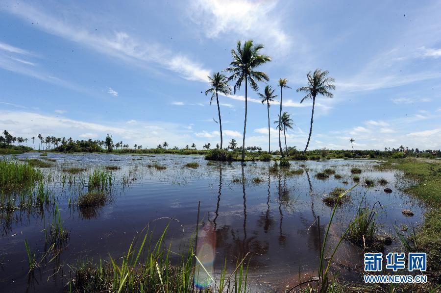 沧海桑田:米拉务的2004年印度洋海啸遗迹(组图)