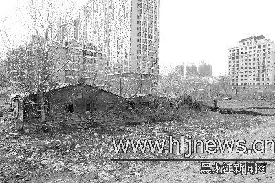 何家沟河道内的违建房屋。