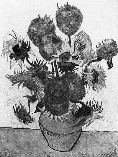 梵高名画 向日葵 中的向日葵是真的么