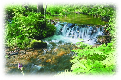 溪水潺潺。