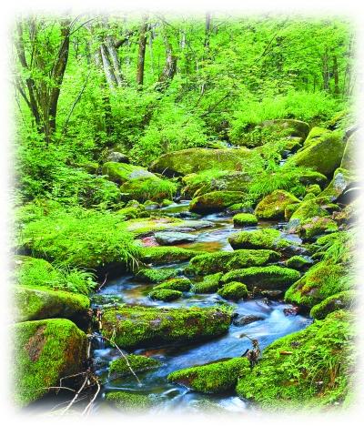 金龙山吊水壶玉龙溪。