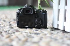 APS-C高端单反相机 佳能7D套机售13800元