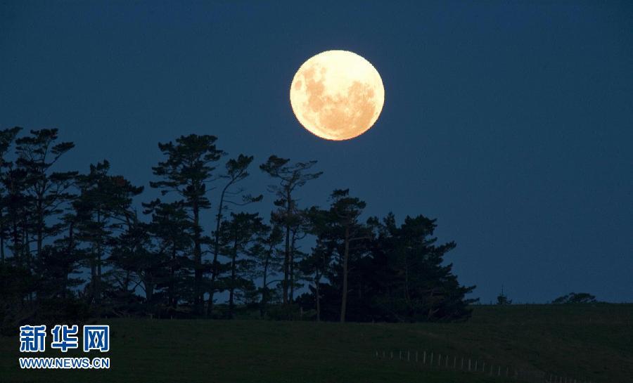 城市晚上的月亮
