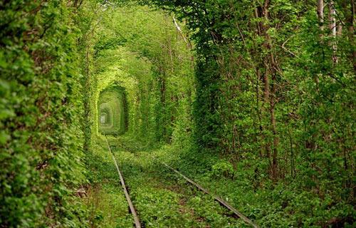 (Tunnel-Of-Love)绿色火车隧道