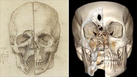 千露露人体_英展出达芬奇人体解剖素描 精确度惊人[图]