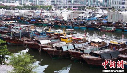 5月15日,海南省三亚市的港口内停靠大量渔船。随着南海伏季休渔期的到来,渔船陆续回港休整。中新社发 尹海明 摄