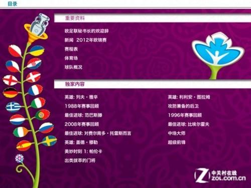 预热2012欧洲杯 精彩内容APP里抢先看