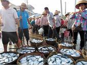海南渔民:这是我们的祖宗海 亏钱也要去黄岩岛