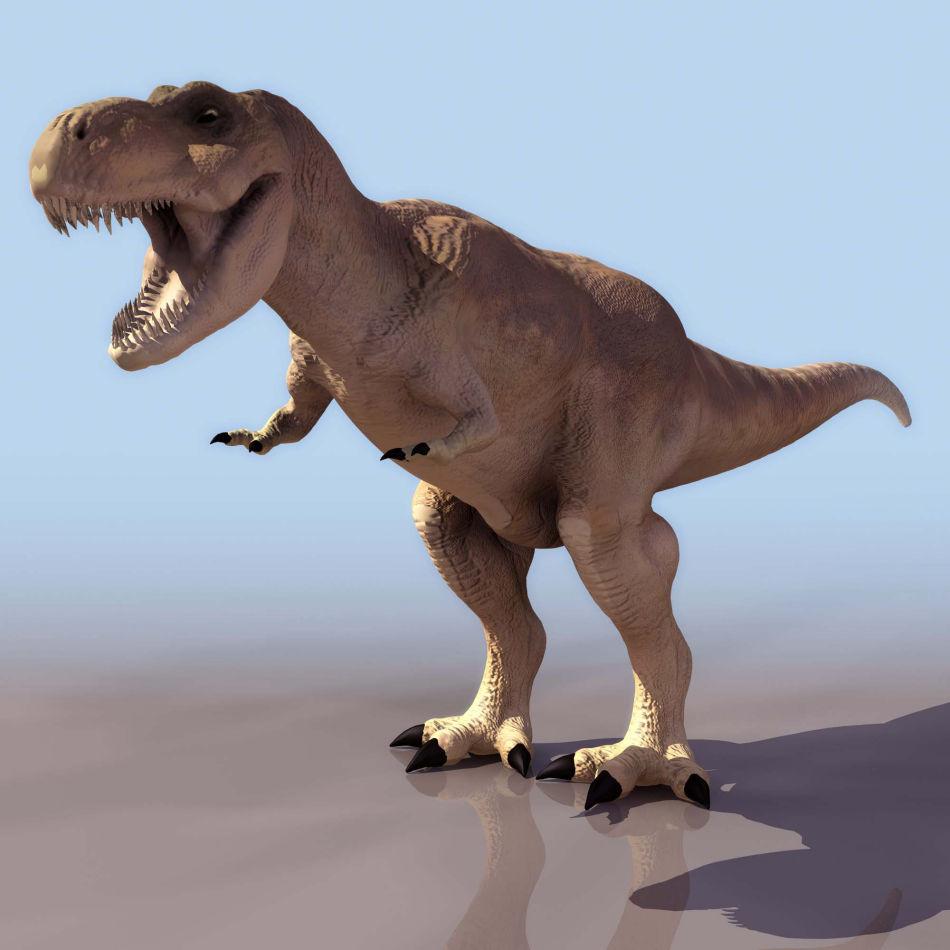 观大腿识性别 你不知道的恐龙那些事儿