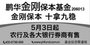 鹏华基金戴钢:发行时机决定保本基金收益水平