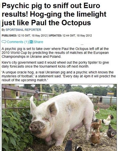 猪先知成欧洲杯官方神兽