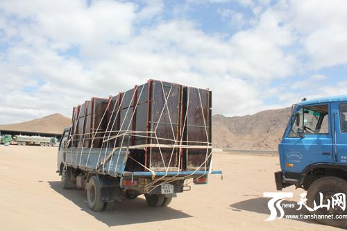 中国 鲁姆普/装野马的汽车驶离中国新疆阿勒泰塔克什肯镇