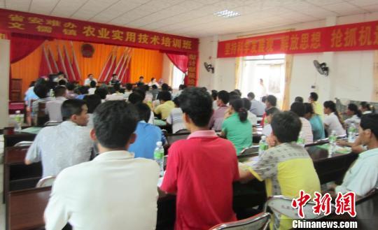 海南省安难办在澄迈文儒镇开设高效农业技术培训班。
