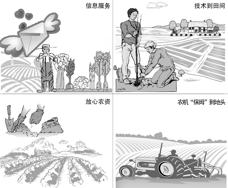 """他们迫切希望几场""""及时雨""""洒落在增产增收的田野上."""