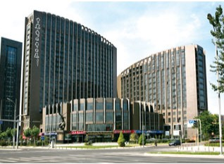 庞大汽贸集团股份有限公司 对外投资公告