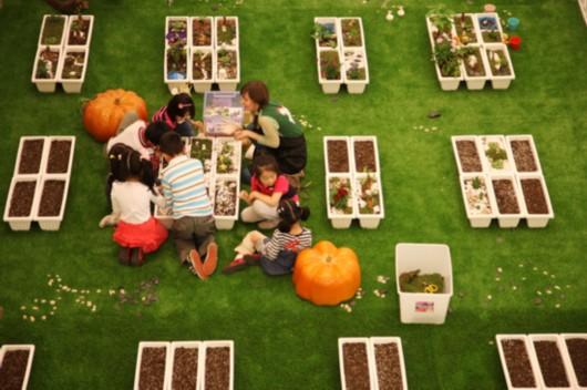 """亲手翻动小铲松土浇水 儿童节去""""开心农场""""学种菜(图)图片"""