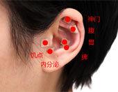 第09期:贴耳豆减肥法