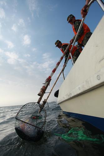 """辽宁海警开展""""清理白色垃圾 净化海洋环境""""活动"""