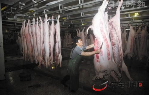 定点屠宰让猪肉更放心(组图)