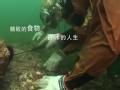 《舌尖上的中国》30秒宣传片