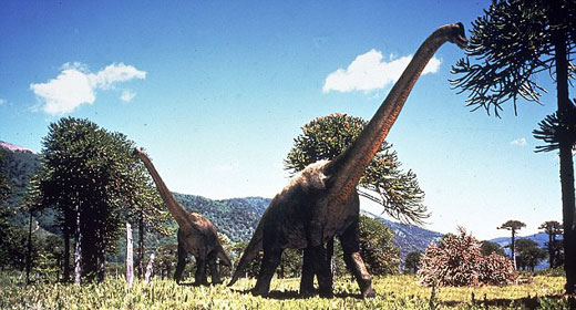 世界上最大的食草动物——蜿龙