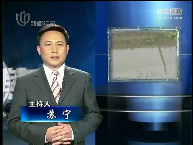 上海电视台案件聚焦_视频:案件聚焦之大师画室今安在
