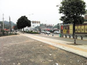 湘味醇饭店前坪的行道树几乎都被毁坏了。傅小平 摄