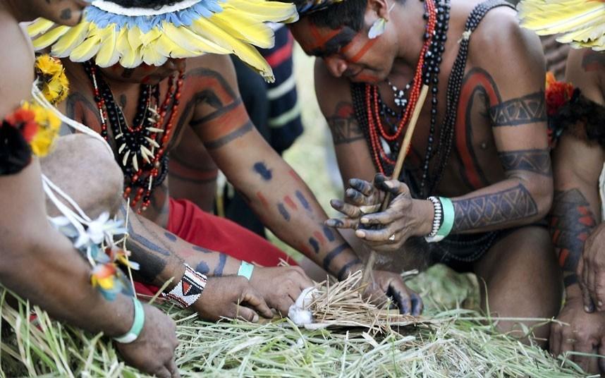 卡亚波人和夏莱提人用传统的方法取火.图片