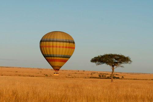 动物的天堂——肯尼亚