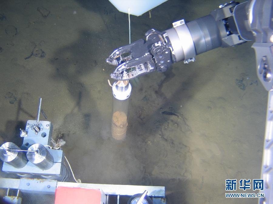 蛟龙号所拍海底生物照片公布 高清组图