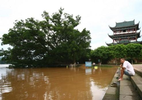 6月25日,洪水逼近赣州八境台码头外.