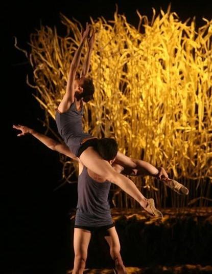 亚洲情色977_《惊梦》《情色》将献演沪上 王媛媛谈现代芭蕾(组图)