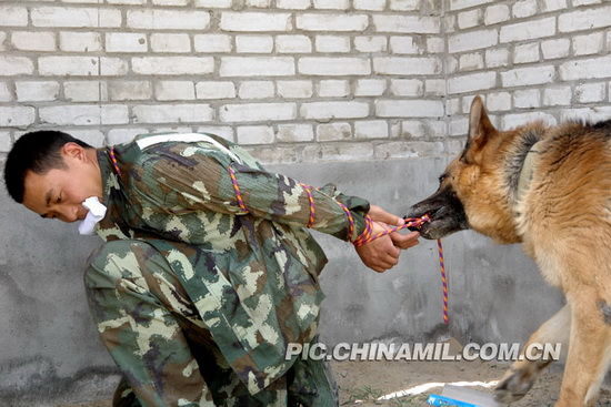 警犬解救人质