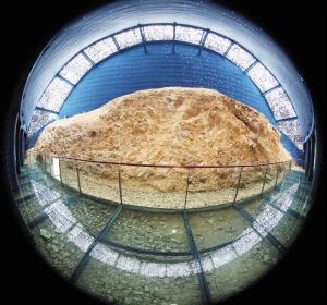 这是澄江化石地的化石发现点
