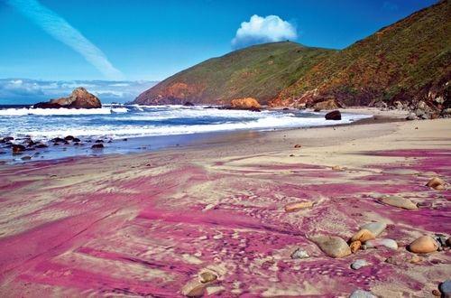 加州帕非佛沙滩 最浪漫的紫色沙滩