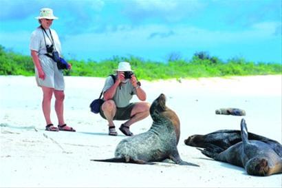 加拉帕戈斯群岛原生态美丽沙滩