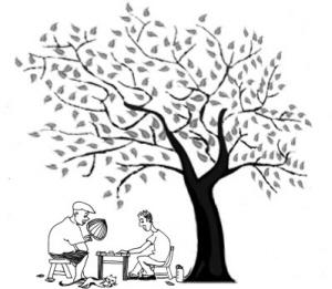树下乘凉更消暑 尤其合适老人